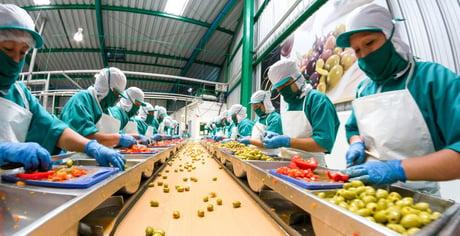 Food industrie
