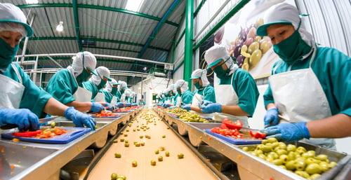 Voedingsmiddelen industrie koeling